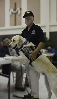 Pax Comfort Dog with his Veteran Handler demonstrating a rise command.