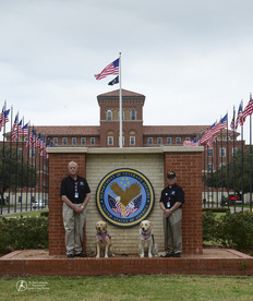 Veterans with Kare-9 Pax and Phoebe at the Veterans' Hospital.